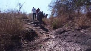 Uganda Hiking safaris - Uganda Mountain Climbing safaris