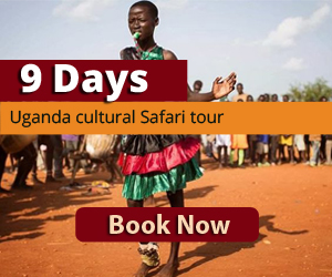 Cultural safaris to Karimojong