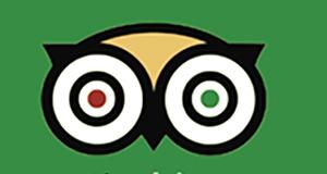 Recommend Ababa Uganda Safaris on Tripadvisor