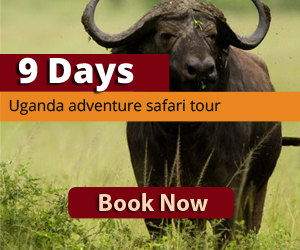 Adventure safari to Kidepo valley NAtional Park